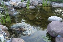 Pond-Carroll-County-Maryland
